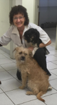 Veterinarian With Dogs